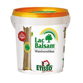 FRUNOL DELICIA® Etisso® LacBalm Haavan sulkeminen, 1 kg