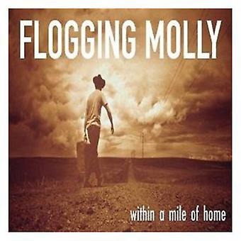 Flogging Molly - Within a Mile of Home [CD] USA import