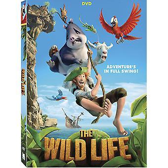 Wild Life [DVD] USA importieren