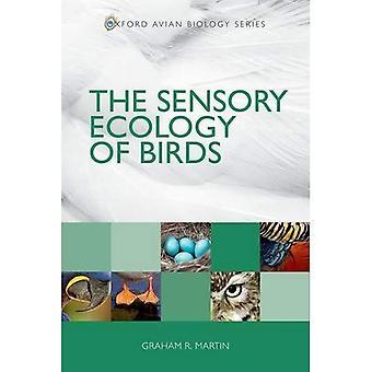 Den sensoriska ekologin av fåglar