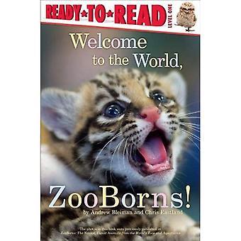 Bem-vindo ao mundo, ZooBorns! (Pronto-para-ler - nível 1 (qualidade))