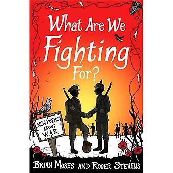 Wat zijn We vechten voor? (Macmillan poëzie): nieuwe gedichten over oorlog