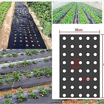 Black Garden Vegetable Membrane Agricultural Plants Mulching Seeding Plastic Perforated PE Film