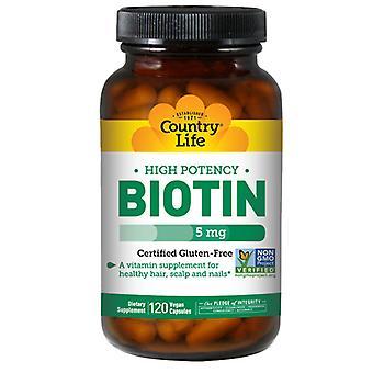الحياة القطرية البيوتين عالية فاعلية نباتي، 5 MG، 120 قبعات