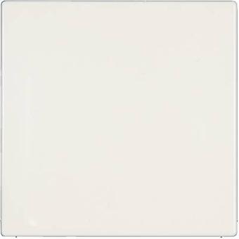Jung Cover Blind LS 990, LS design, LS plus Alpine white LS 994 B WW