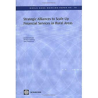 Strategische allianties aan schaal omhoog de financiële diensten in plattelandsgebieden