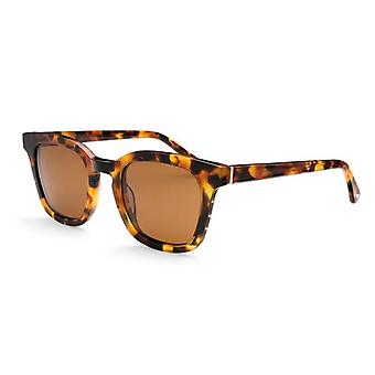 Sunglasses Reno ACE/POL brown
