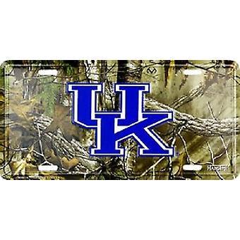 Kentucky Wildcats NCAA Camo matrícula