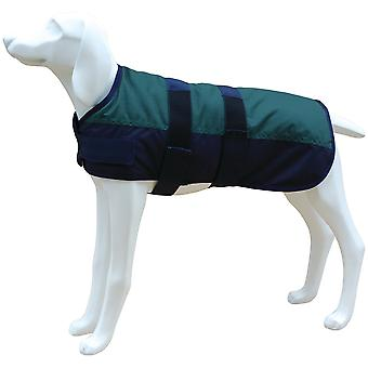 Freedog Jacket North Pole Model B Green (Dogs , Dog Clothes , Coats and capes)