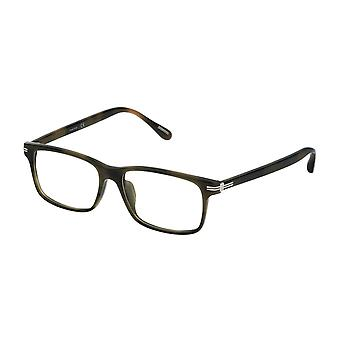 Dunhill VDH059 092I Shiny Green Havana Glasses