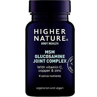 Higher Nature MSM Glucosamine Joint Complex Vegitabs 240 (MSG240)