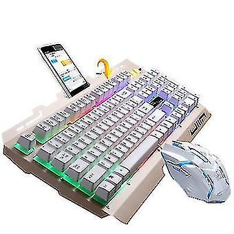 Dizüstü bilgisayar standı (Altın) ile USB kablolu metal klavye ve fare seti