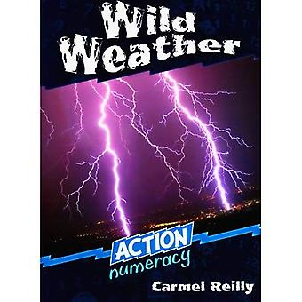 Wild Weather (Action Numeracy)