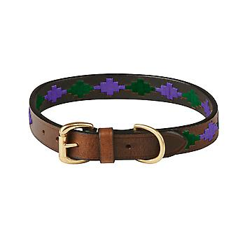Weatherbeeta Polo lederen Dog Collar-Beaufort bruin/paars/Teal