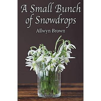 A Small Bunch of Snowdrops by Allwyn Brown - 9780722349441 Book
