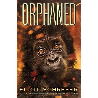 Orphaned Ape Quartet 4 Volume 4 door Eliot Schrefer