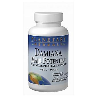 Planetary Herbals Damiana Male Potential, 575 mg, 180 Tabs