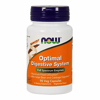 Now Foods Optimum Digestive System, 90 Vcaps