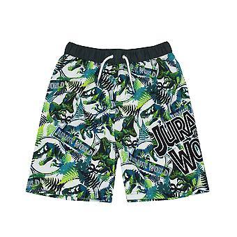 Jurassic World Swim Shorts For Boys | Kids Tyrannosaurus T Rex Dinosaur Swimming Trunks Pants | Children's Green Swimwear
