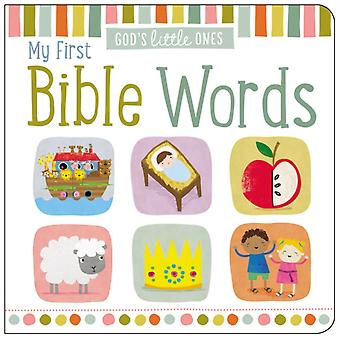 My First Bible Words by Thomas Nelson