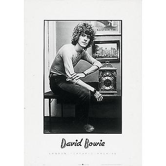 David Bowie krøllet hår plakat Print (20 x 28)