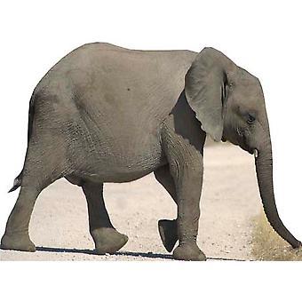 Baby Elephant - Lifesize Cardboard Cutout / Standee