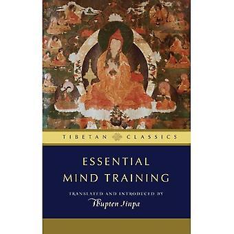 Formation de l'esprit essentiel: Sagesse tibétaine pour la vie quotidienne (bibliothèque des classiques Tibétains)