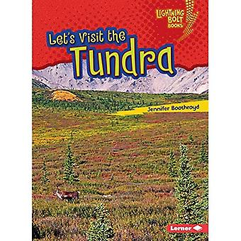 Wir besichtigen die Tundra (Lightning Bolt Bücher Biom Entdecker)