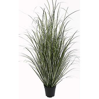 Decoratief gras in pot H122 cm