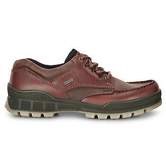 ECCO mens 2019 track 25 olie nubuck leer waterdichte Gore-Tex Walking Boots