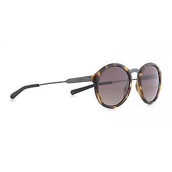 Sunglasses Unisex Pasadena brown/black (001)