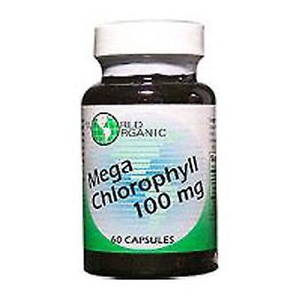 World Organics Mega Chlorophyll, 100 MG, 120 Caps