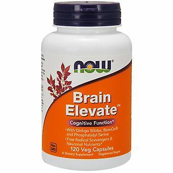 עכשיו ממזון המוח לרומם נוסחה, 120 Vcaps