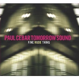 Cebar, Paul huomenna ääni - töykeä hienoa [CD] USA tuonti