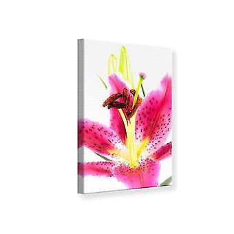Leinwand drucken Makro Lily