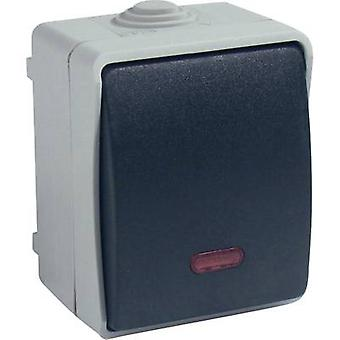 GAO 9877 Wet room switch product range Control switch Standard Grey