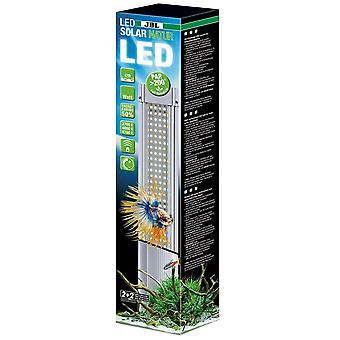 JBL LED Solar Natur 59w [115-140cm]