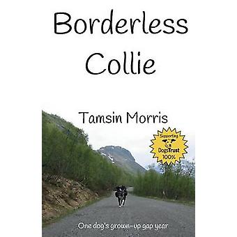 Borderless Collie One dogs grown up gap year by Morris & Tamsin