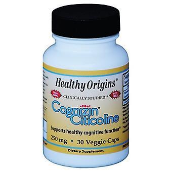 Healthy Origins Cognizin, 250MG, 30 Caps
