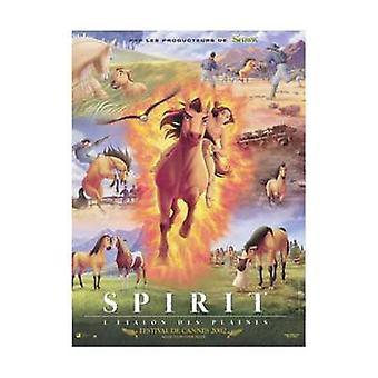 Spirit étalon du Cimarron Movie Poster (11 x 17)