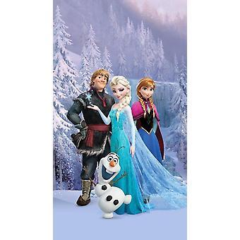 Disney Frozen tente pour ensemble de chambre à coucher de 140x245cm de portes de patio
