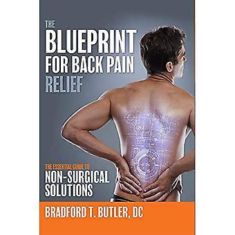 Blueprint selkäkipu helpotus: Essential Guide to ei-kirurgiset ratkaisut