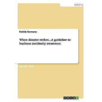 Når katastrofen rammer... En retningslinje for business kontinuitet bevidsthed af Hermann & Patrick