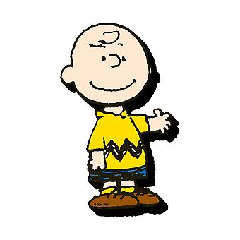 Imán de personaje Charlie Brown