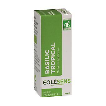 Tropical basil 10 ml of essential oil