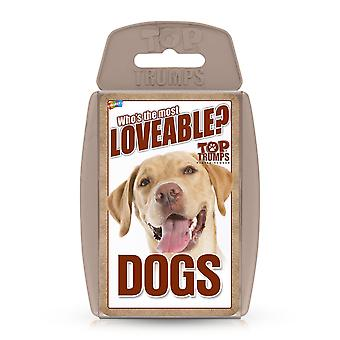 Dogs RB Top Trumps Card Game