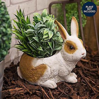 Naturecraft Collection - Kaninchenpflanzer