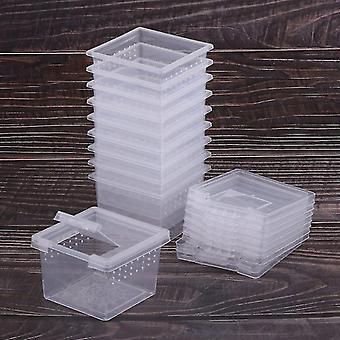Habitats anfíbios répteis alimentando caixa de répteis tanque de criação de gaiola para lagartos besouro aranha-aranha