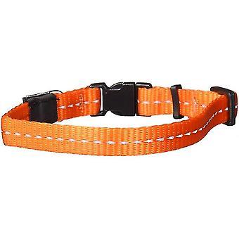 Pet leashes collar dogs nitelife 20-32 cm nylon orange