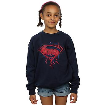 DC Comics jenter Superman Geo Logo Sweatshirt